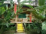 Cabanas Rio Napo